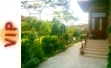 Къща за гости Калина Павел баня