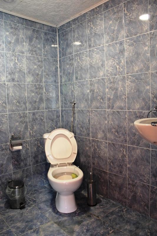 Стаи под наем Семейство Кръчеви- Павел баня