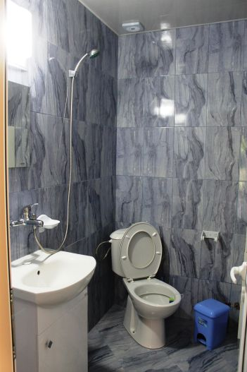 Къща за гости 'Велина' Павел баня